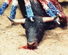 Tell coca cola to stop sponsoring bull fighting. Please sign the petition. Bullfighting is not a fight at all. It's a systematic torture killing that pits a gang of armed thugs... (47861 signatures on petition)