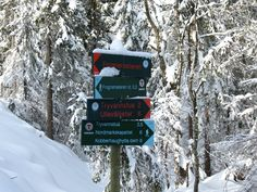 So beautiful winter time!! - Review of Nordmarka, Oslo, Norway - TripAdvisor