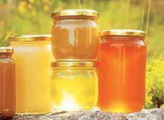 Honigwahl