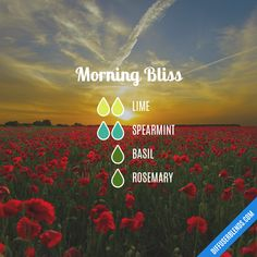 Morning Bliss — Essential Oil Diffuser Blend
