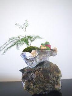 Saikei shell on rock