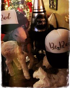 Happy first week of the new year!! BE RAD is our motto for 2016! What's yours? Get your Be Rad hat at www. HarmonieCuffs.com  #BeRad #hats #inspiration