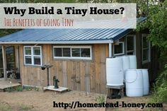 Tiny Houses are super popular, but are they for everyone?  Read on to learn why a Tiny House was a great option for our family of four (even though we didn't intend to build one!)  | Homestead Honey