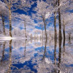 Traum in Blau Fotografie-Druck von Philippe Sainte-Laudy bei AllPosters.de