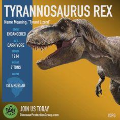 T.rex dpg