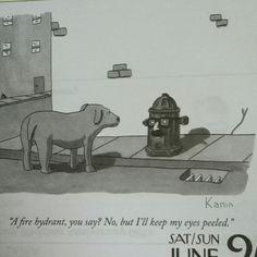 An incognito fire hydrant!
