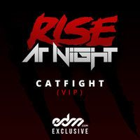 Catfight by Rise At Night (VIP Remix) -EDM   My song for my other ego.