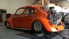 533 Best Vw Beetle I Like Images Vw Bugs Volkswagen Beetles