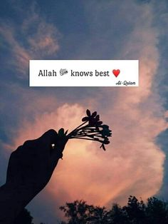 Beautiful Quotes About Allah, Quran Quotes Love, Quran Quotes Inspirational, Muslim Love Quotes, Hadith Quotes, Love In Islam, Beautiful Islamic Quotes, Religious Quotes, Words Quotes