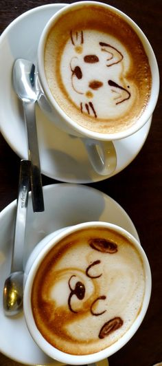 #Cat & #Dog .·:*¨¨*:Coffee♥Art:*¨¨*:  #latte #coffee