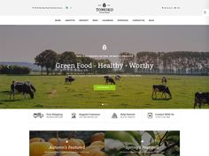 Tomoko is a clean and great vegetable free HTML template for organic, food, vegetable business. The home page has many areas for you to show your business. Fantastic slides always appear beautifully to attract your customer as well as promote your product. The package product areas are where you can provide many packs with many purposes for your customer to choose.