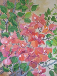 """peach bougainvillea"" (available at the Village Gallery in Lahaina Maui)"