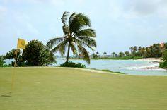 Golf o Playa? En bahamas tienes las dos.