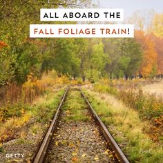 All aboard the Fall Foliage Train! Watch this video to learn more about Amtrak's fall routes that let you see the beauty of autumn.