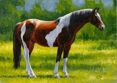 ORIGINAL Horse Painting - Equine Art - by animal artist Crista Forest #Realism