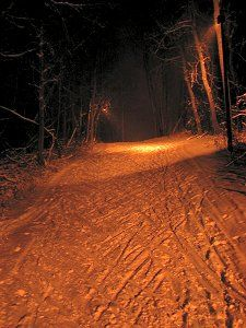 Under the lights at Elm Creek Under The Lights, Cross Country Skiing, Country Roads, Snow, Image, Let It Snow
