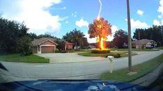 Μοναδικά πλάνα από κάμερα αυτοκινήτου (Dashcam), που κατέγραψε έναν σπάνιο κεραυνό να χτυπάει δέντρο στο Thunderstorm Clouds, Thunderstorms, Lightning Flash, Lightning Strikes, Strange Weather, Clear Blue Sky, Central Florida, Travel Light, End Of The World