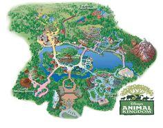 animal kingdom map large