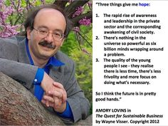 """Quotation by Amory Lovins from """"The Quest for Sustainable Business"""" (book) by Wayne Visser. Copyright 2012."""