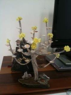 Altın çiçek ağacı