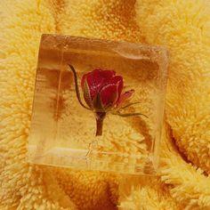 Veilchen, Rosen und andere Blumen in einem Eiswürfel – Nicht nur schön anzusehen, sind sie außerdem das perfekte Add-on für jeden Cocktail. Ice Art, Craft Cocktails, Bartender, Cube, Tableware, Instagram, Art Inspo, Design, Violets