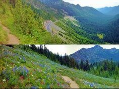 Sheep Lake, Pacific Crest Trail (PCT) Section I.1 - White Pass - Chinook Pass — Washington Trails Association