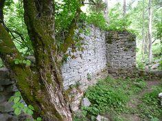 Mill Site at Historic Thomas Amis House Circa 1782 Rogersville TN.