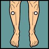 Diarrhea Acupressure » PointFinder » Mobile Enabled