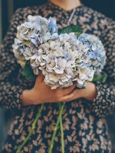 Blue hydrangea for late summer - lovely! Hortensia Hydrangea, Blue Hydrangea, Hydrangeas, Hydrangea Bouquet, Hydrangea Macrophylla, My Flower, Beautiful Flowers, Floral Arrangements, Planting Flowers