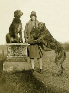 Scottish Deerhound Dog Print Greetings Note Card Vintage Image Lady and Two Dogs