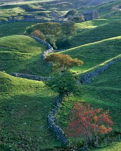 Swaledale,Yorkshire dales,UK