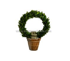 Preserved Boxwood Wreath Topiary..A beauty to relish