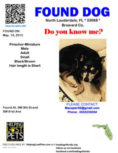 Found Dog - Pinscher-Miniature  - North Lauderdale, FL, United States