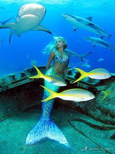 Little Mermaid Erg Mooie 00143