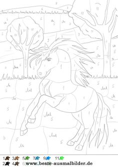 Pferd - Malen nach Zahlen