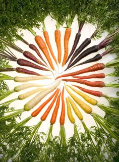 Carrots for reducing the risk of cancer, heart disease and lowering of cholesterol levels. Vitamin A assists with eye health, potassium keeps cramps at bay
