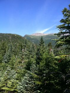 Our hike on boot spur mountain and mt Washington