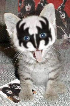 How cute  I love the band KISS