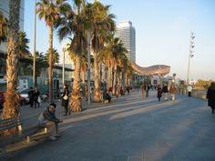 Tutto quello che non sapevi su Barcellona - HostelsClub.com