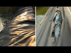 Teichsanierung Teil 1 - Bewertung der Teichfolie - YouTube