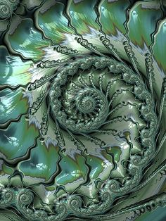 Fronds by Amanda Moore