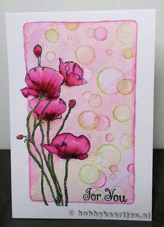 Sheena Douglass Poppies
