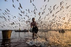 Fotos por Navin Vatsa