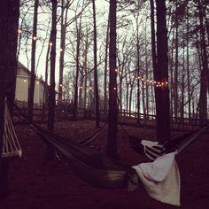 Backyard Hammocks & String Lights