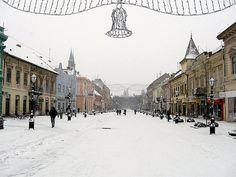 #Winter #Christmas Sombor,Serbia