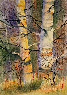 Summer Birch II. watercolor, 20 x 28 on Aquarius II paper.