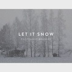 Let It Snow Free Photoshop Brushes—Free for commercial use