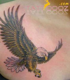 Finest Eagle Tattoo Designs And Concepts For Males and Girls With Meanings.Eagle, sure you're proper Eagle is called the king of . Dad Tattoos, Future Tattoos, Love Tattoos, Girl Tattoos, Tattoos For Guys, Tattoos For Women, Tatoos, Tattoo Pics, Army Tattoos