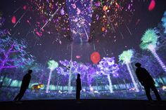 Story of the Forest teamLab, 2016, Interactive Digital installation, Endless, Sound: Hideaki Takahashi
