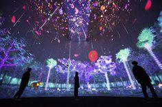 シンガポールとその周辺地域に生きる花々や木々、動物を、デジタルアートとして表現。高さ約15mのドームと、その空中にかかる橋と回廊で構成される、大規模なインスタレーション空間。作品入口から出口まで鑑賞者が移動する距離は全長170mを超える。  高さ約15mのドーム空間の空中にかけられた橋では、シンガポールの花々が時間と共に刻々と変化しながら咲き渡る、宇宙空間が無限に広がる。  シンガポールの花々が振りそそぐドーム空間の空中にかけられた橋を渡ると続く、外壁沿いの螺旋状の回廊は、シンガポールの動植物が生息する広大でインタラクティブな森。回廊を進むにつれて、朝から、夕方、夜の世界になり、実際のシンガポールの季節に合わせて乾季や雨季が訪れる。   廊から続くドーム空間では、鑑賞者が壁に近づき立ち止まると、地面が生まれ木が生え森ができ、動物が出現する。 作品はコンピュータプログラムによってリアルタイムで描かれ続けている。今この瞬間の絵は二度と見ることができない。  また、専用アプリ「Story of the…